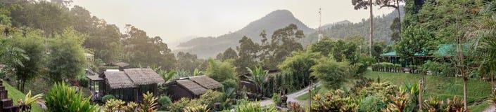 Naturliga Forest Resort Arkivfoto