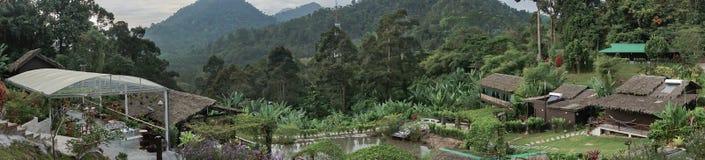 Naturliga Forest Resort Royaltyfri Fotografi