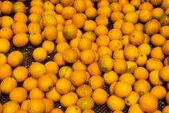 Naturliga grönsaker på marknadsräknare Kinesisk mycket liten apelsin, Calamondin royaltyfri bild