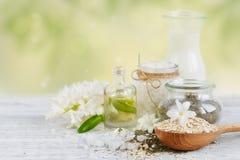 Naturliga ingredienser för hemlagad ansiktsbehandling- och kroppmaskering royaltyfria bilder