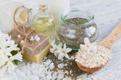Naturliga ingredienser för hemlagad ansiktsbehandling- och kroppmaskering arkivbilder
