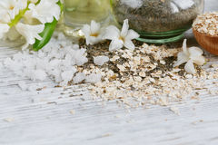 Naturliga ingredienser för hemlagad ansiktsbehandling- och kroppmaskering royaltyfri fotografi