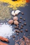 Naturliga kryddor och örter spridde på mörk bakgrund Naturliga och bio ingredienser för att laga mat Arkivbild
