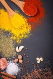 Naturliga kryddor och örter spridde på mörk bakgrund Naturliga och bio ingredienser för att laga mat Royaltyfri Foto