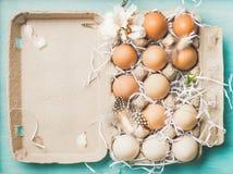 Naturliga kulöra ägg för påsk i asken, blå bakgrund royaltyfri bild