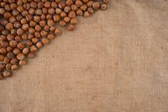 Naturliga obrutna hasselnötter på en jute hänger löst bakgrund royaltyfria bilder