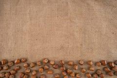 Naturliga obrutna hasselnötter på en jute hänger löst bakgrund Royaltyfri Foto