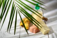 Naturliga organiska badprodukter handduk, tvål, schampoflaska och l Royaltyfri Fotografi