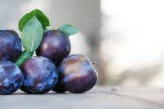 Naturliga organiska blåa plommoner på trätabellen Bönder bär frukt stillebenfotografi, härlig bokeh för selektiv fokus Arkivbilder