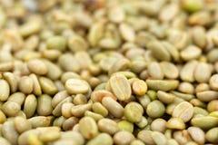 Naturliga organiska gröna kaffebönor arkivbild