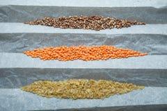 Naturliga organiska sädesslag: linser, bulgur och bovete En uppsättning för ett sunt bantar, kolhydrater royaltyfria bilder