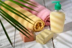 Naturliga organiska skönhetsmedel för håromsorg Badprodukter, badrumuppsättning Royaltyfri Bild