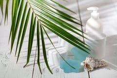 Naturliga organiska skönhetsmedel för håromsorg Badprodukter, badrumuppsättning Fotografering för Bildbyråer