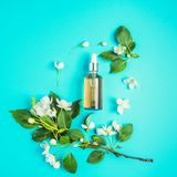 Naturliga organiska sk?nhetsmedel p? bl? bakgrund i en ram av blommor Tv?l-, handduk- och blommasnowdrops royaltyfri bild