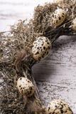 Naturliga påskgarneringar, garnering med vaktelägg royaltyfri foto