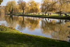 Naturliga platser på floden av avon i stratforden UK royaltyfria bilder