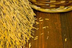 Naturliga ricekorn. Royaltyfri Fotografi