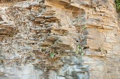 naturliga rocks arkivbild