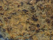 Naturliga Rocktexturer Royaltyfri Bild