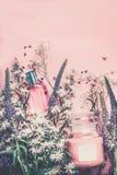 Naturliga skönhetsmedel med växt- sidor och blommor, tom etikett för att brännmärka modellen på bakgrund för pastellfärgade rosa  arkivbild