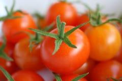 Naturliga små röda tomater som är nya och Arkivfoto