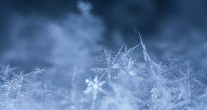 Naturliga snöflingor på snö arkivbild