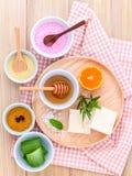 Naturliga Spa ingredienser Fotografering för Bildbyråer