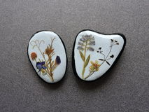Naturliga stenar med torkade blommor Royaltyfria Bilder
