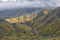 Naturliga texturer i bergen, Ecrins, fjällängar, Frankrike Royaltyfria Bilder