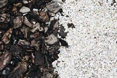 Naturliga texturträ och stenar Arkivbilder