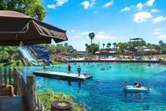 Naturliga vårar som simmar Weeki Wachee, Florida arkivbilder