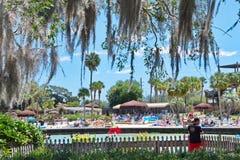 Naturliga vårar som simmar Weeki Wachee, Florida arkivfoton