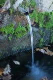 Naturliga vattenkällor Royaltyfri Fotografi