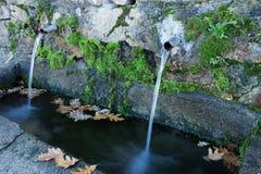 Naturliga vattenkällor Royaltyfria Bilder