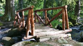 Naturliga Vitosha parkerar nära Sofia, Bulgarien Det guld- broområdet Vattenströmlandskap stock video