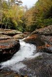 Naturliga waterslides - ohiopyle, PA Arkivfoto