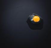Naturligt ägg på svart bakgrund Arkivbilder