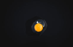 Naturligt ägg på svart bakgrund Fotografering för Bildbyråer