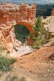 Naturligt överbrygga i Bryce kanjonnationalpark Royaltyfria Bilder