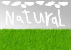 naturligt stock illustrationer