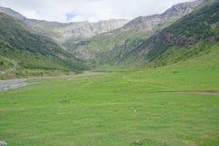 Naturligt berg royaltyfri bild