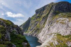 Naturligt berglandskap på sommar i Lofoten, Norge arkivfoton