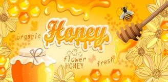Naturligt blom- honungbaner vektor illustrationer