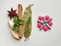 Naturligt bota kontra moderna pills royaltyfri fotografi