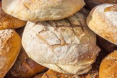 Naturligt bröd Royaltyfria Bilder