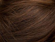 Naturligt brunt hår royaltyfri fotografi