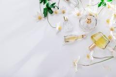 Naturligt doftbegrepp Flaskor av doft med vita blommor Blom- doft fotografering för bildbyråer