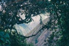 Naturligt fönster på den Inca Trail roen Machu Picchu peru härligt dimensionellt diagram illustration södra tre för 3d Amerika my royaltyfria bilder