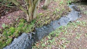Naturligt flödande vatten arkivbild