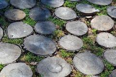 Naturligt golv från tvärsnittet av ett träd royaltyfria foton
